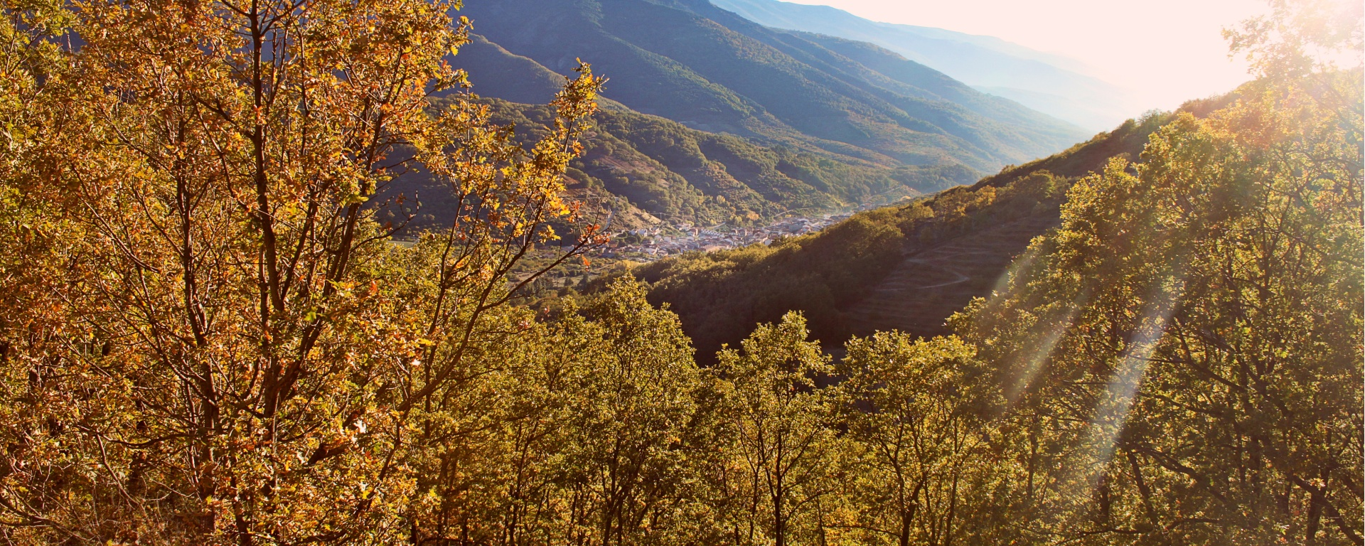 Otoño en el Puerto de Tornavacas - Valle del Jerte - Valle Cereza